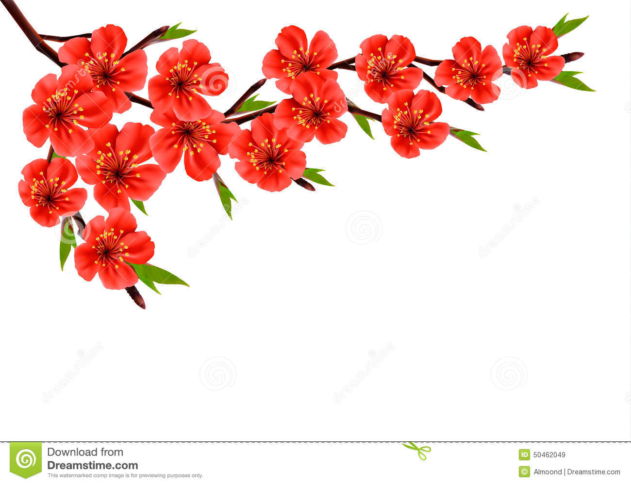 Spring Background With Blossom Brunch Of Red Flowers Stock Vector