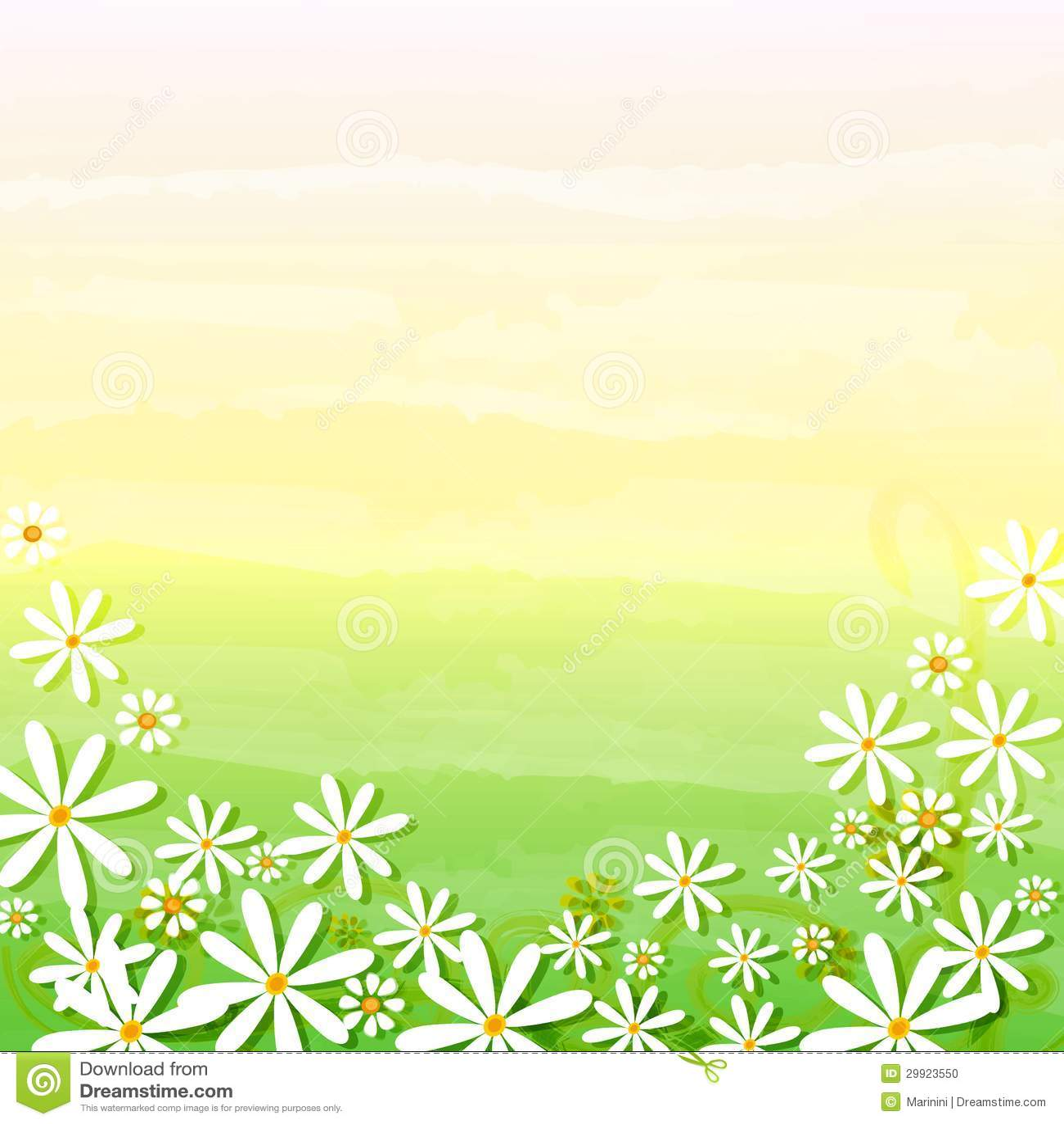 spring flowers in beige green background stock
