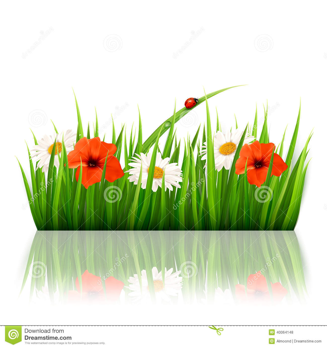 Spring background with flowers, grass and a ladybu