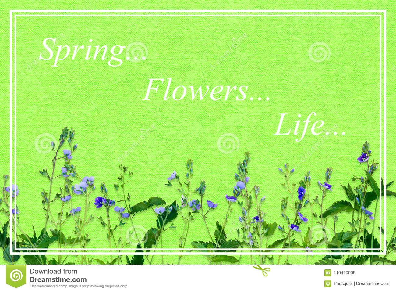 Spring Background With Small Purple Flowers Postcard In Delicat