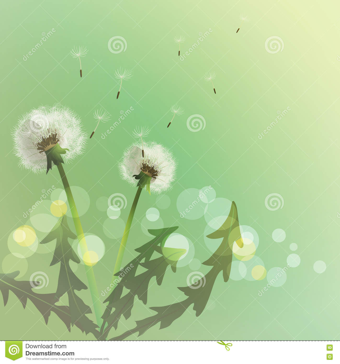 9b6169c2ee133 Spring Background With White Dandelion. Stock Vector - Illustration ...