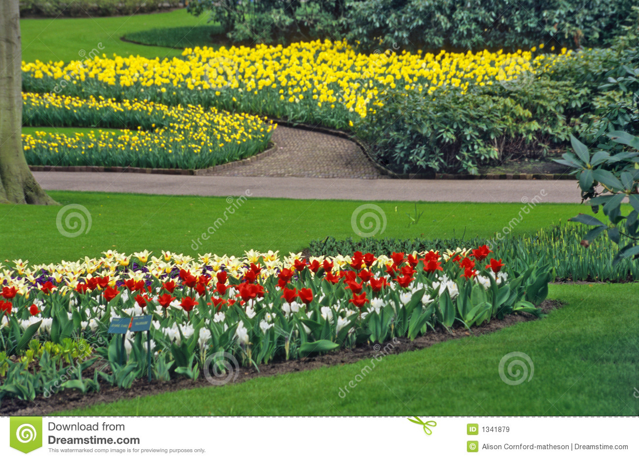 Spring Bulb Garden Royalty Free Stock Images Image 1341879