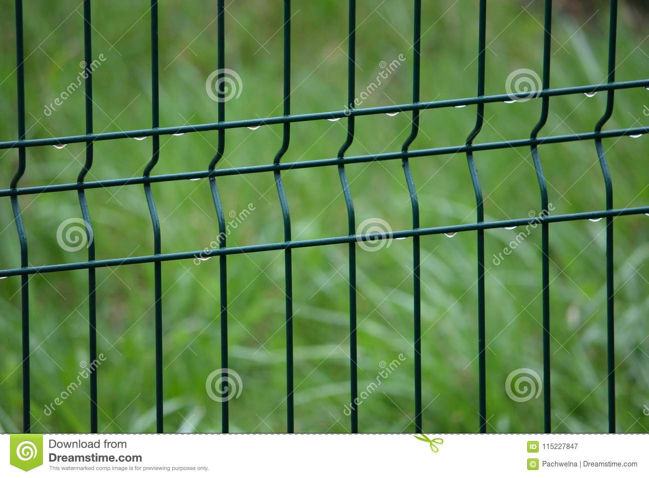 spring captured grid fence with raindrops and blurred green