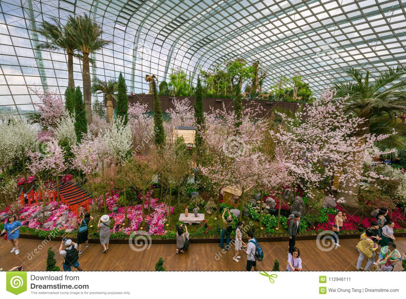Spring Cherry Blossoms At Gardens By The Bay Editorial Photo - Image ...