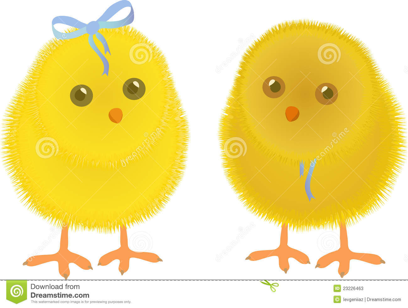 Illustration with two chicken isolated on white background.