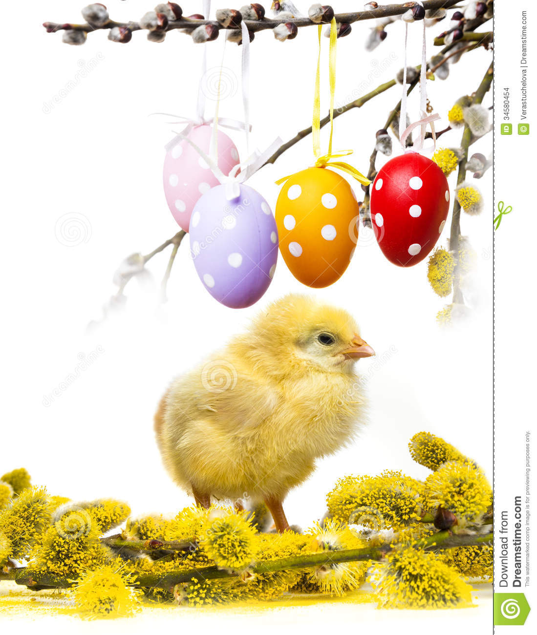 Chicken song download spring free