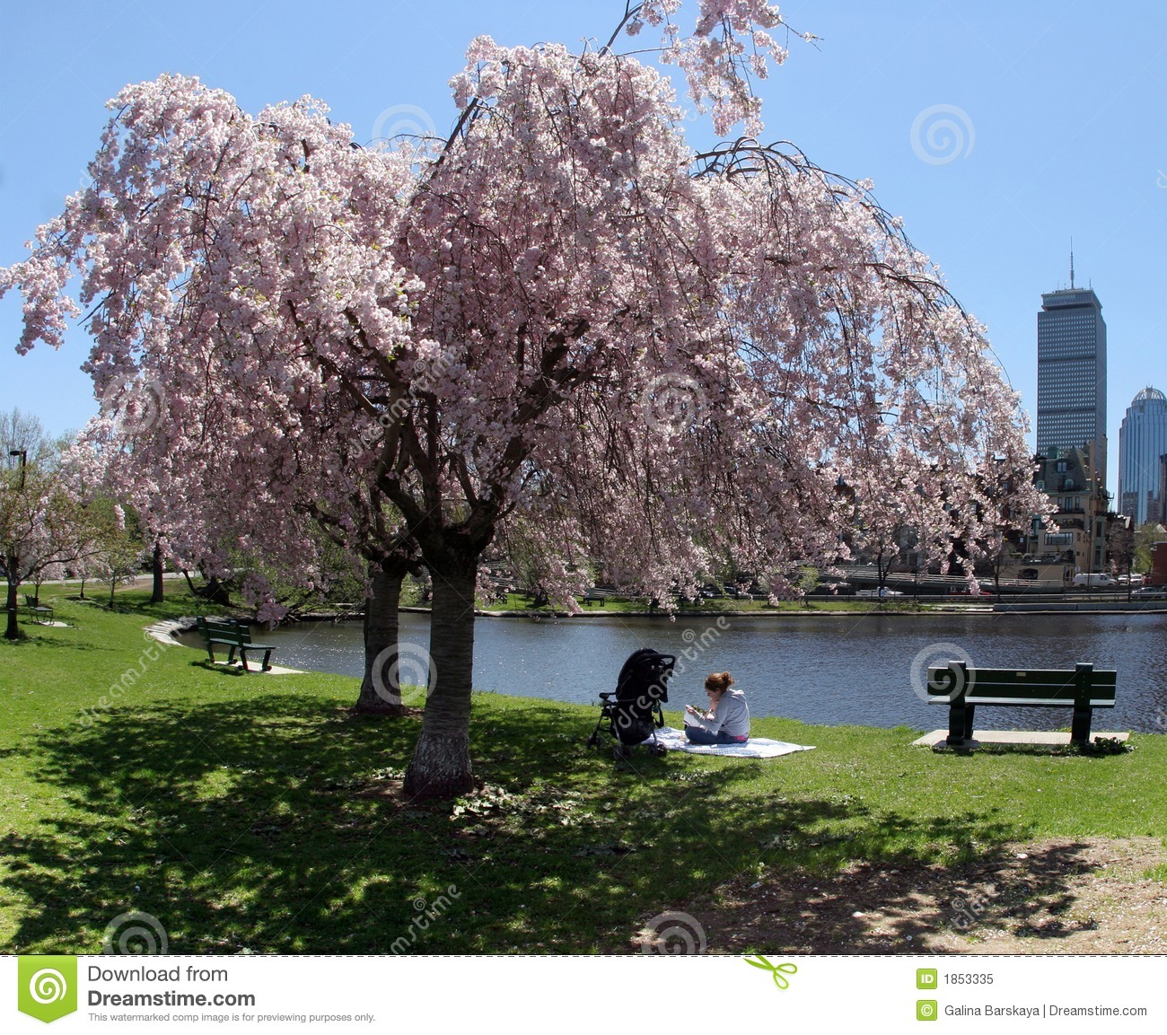 Spring In A City Royalty Free Stock Photo - Image: 1853335