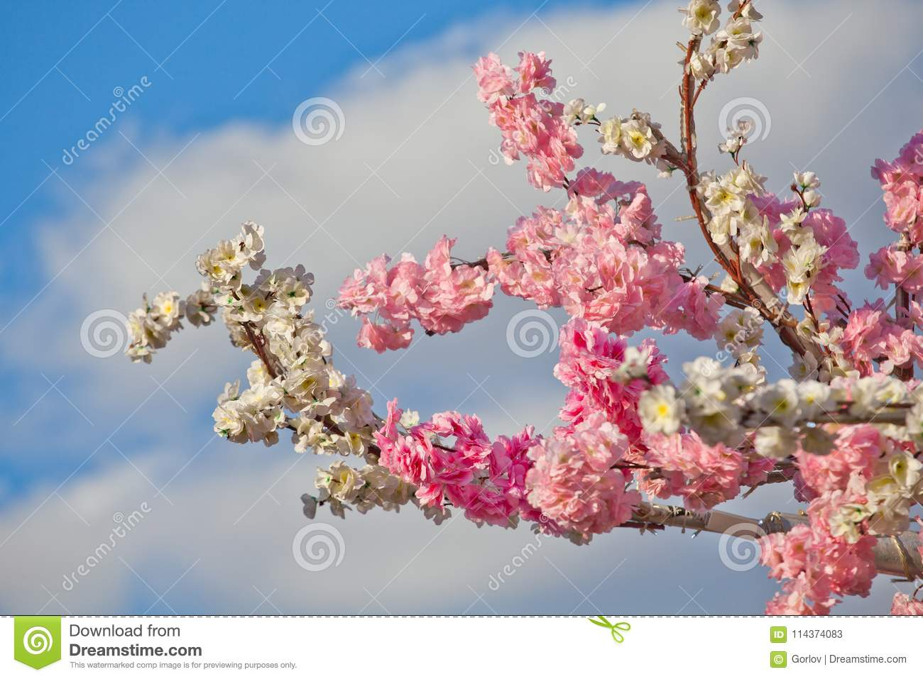 Spring City Flowers Decoration Day Light Stock Image Image Of