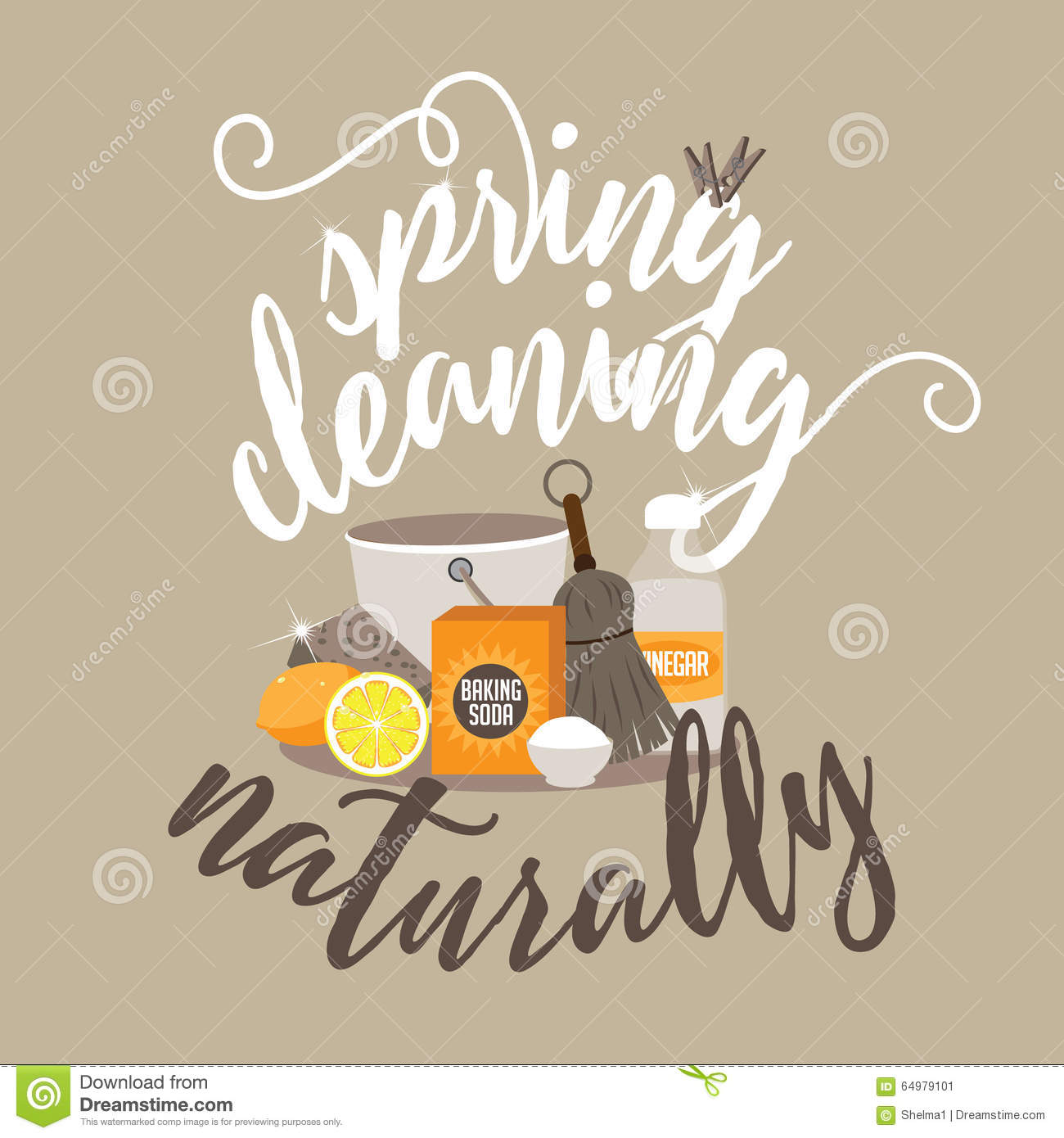 Spring Cleaning Naturally Stock Vector Illustration Of Homemade