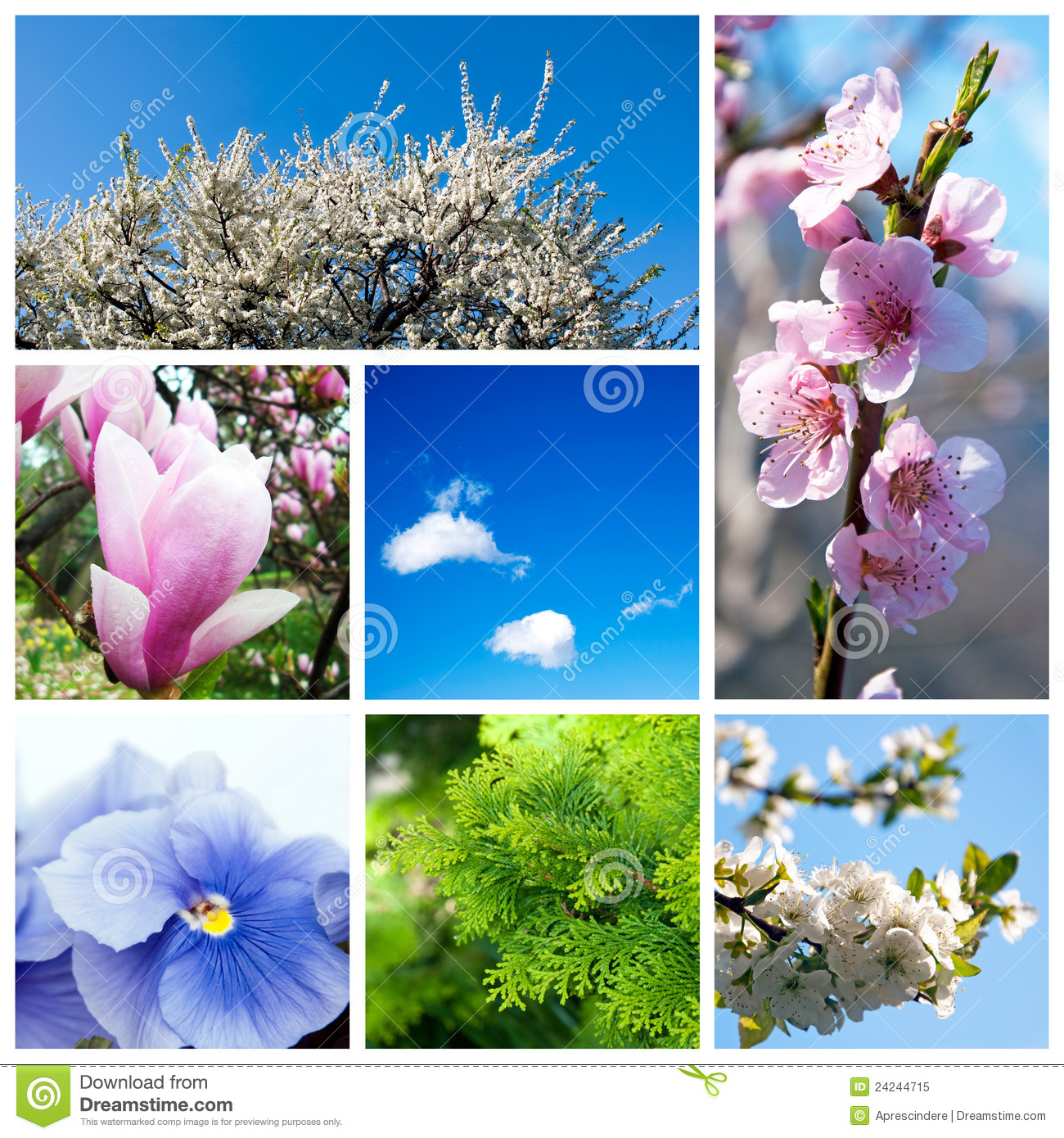 spring collage computer wallpapers - photo #10