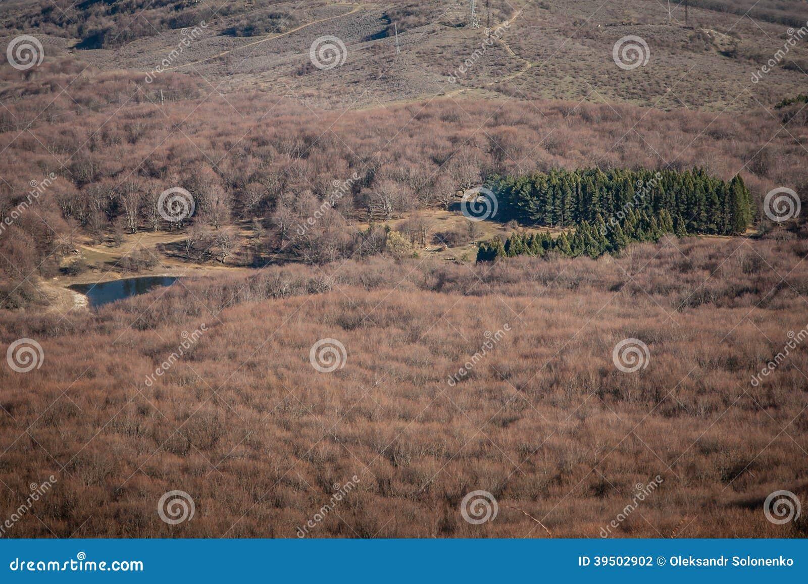 Spring in Crimean mountains