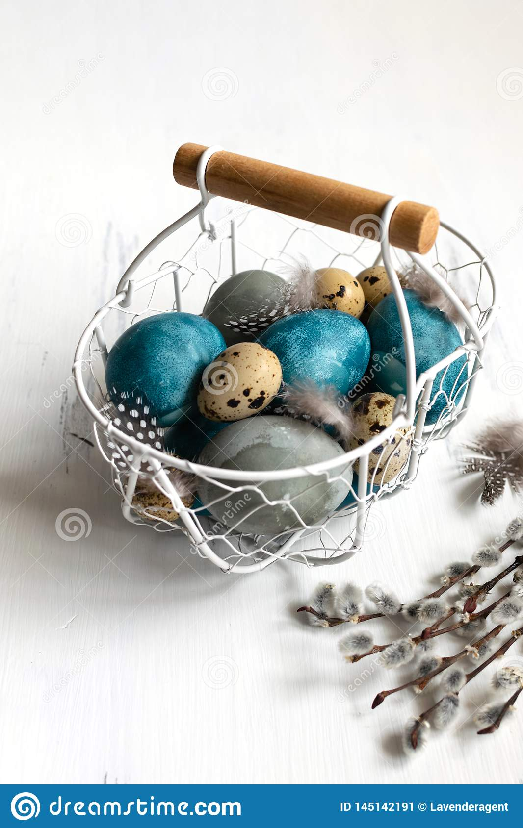 Spring easter concept, - naturally dyed easter eggs, quail eggs, feathers, white wooden background, copy space