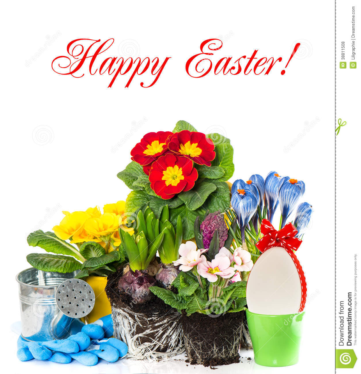 Spring Easter Flowers Composition On White Stock Photo Image Of