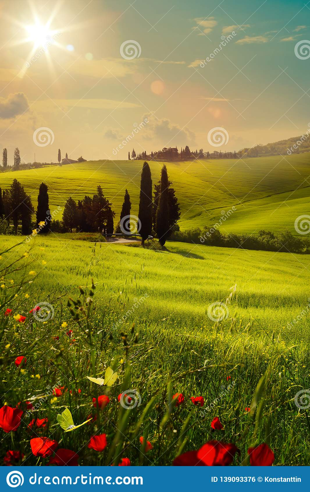 art spring farmland and country road; tuscany countryside rolling hills