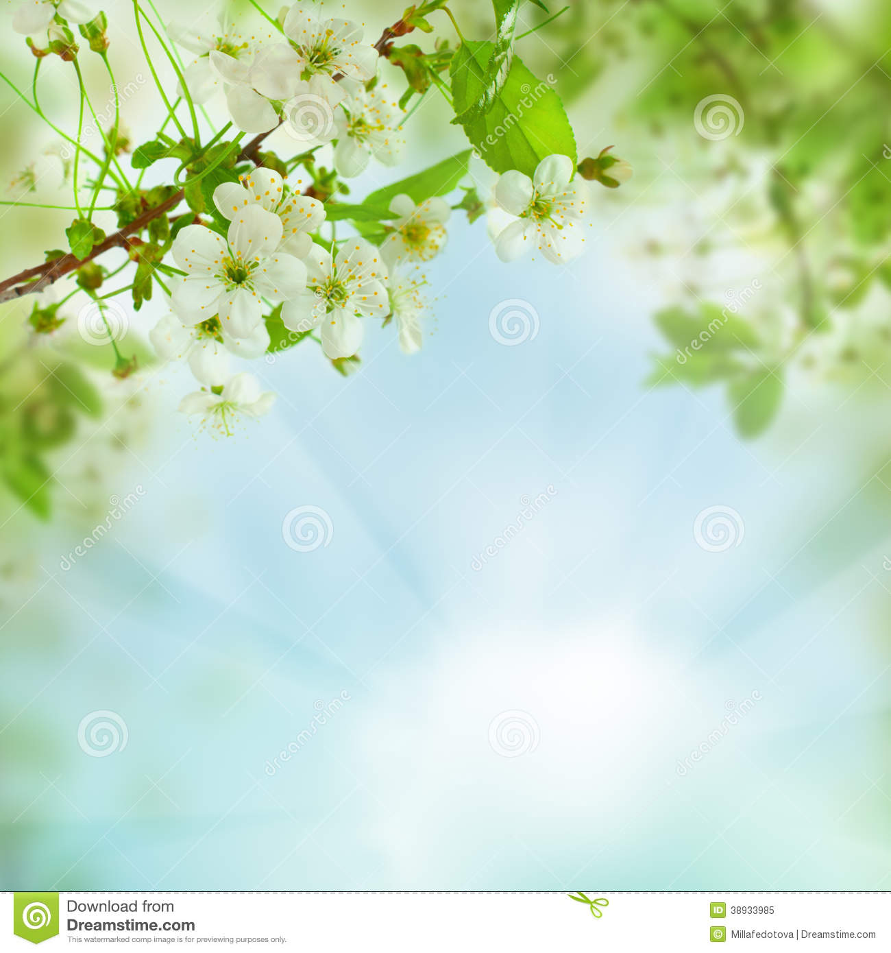 Spring Green Leaves And Flowers Background With Plants: Abstract Nature Concept Stock