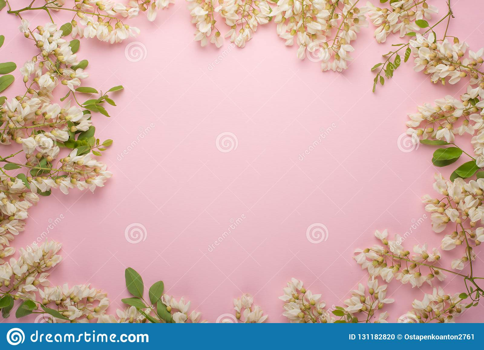 Spring Floral Background Textures And Wallpaper Flat White
