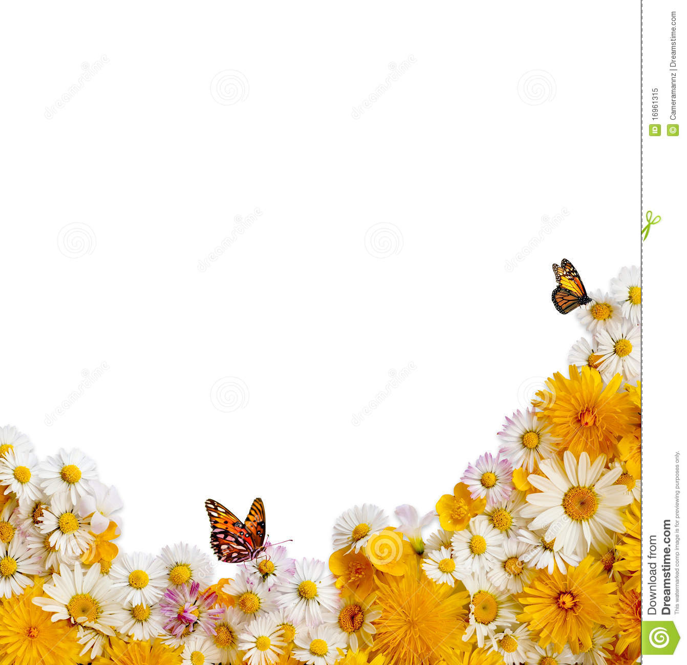 Spring Flower Border Stock Image Image Of Butterfly 16961315
