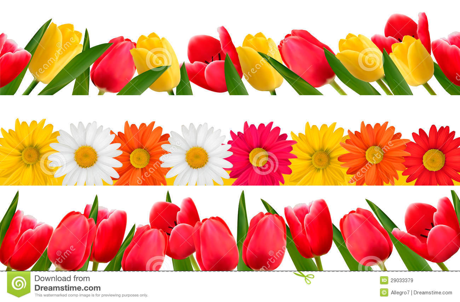 Spring Flower Borders Vector Stock Vector Illustration Of