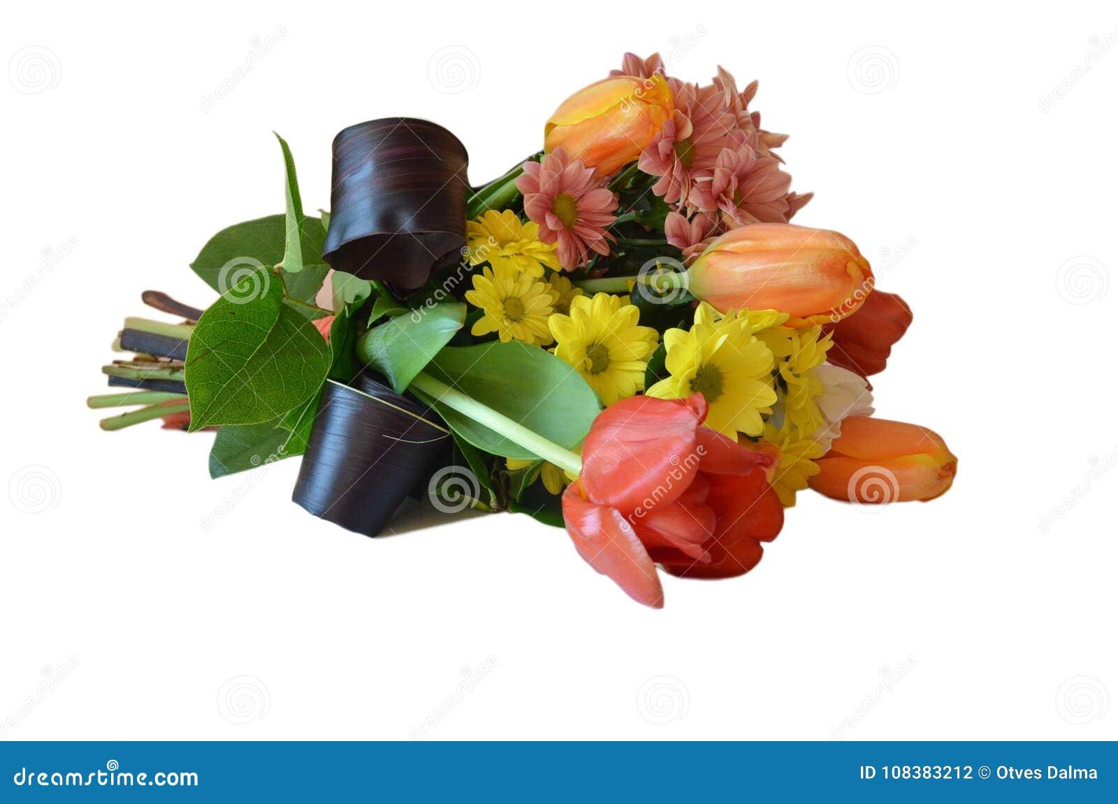 Spring Flower Bouquet Isolatd On White Stock Photo Image Of