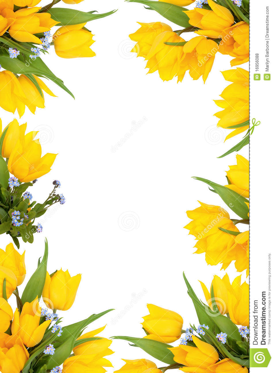 Spring Flower Frame Royalty Free Stock Photos - Image: 16956088