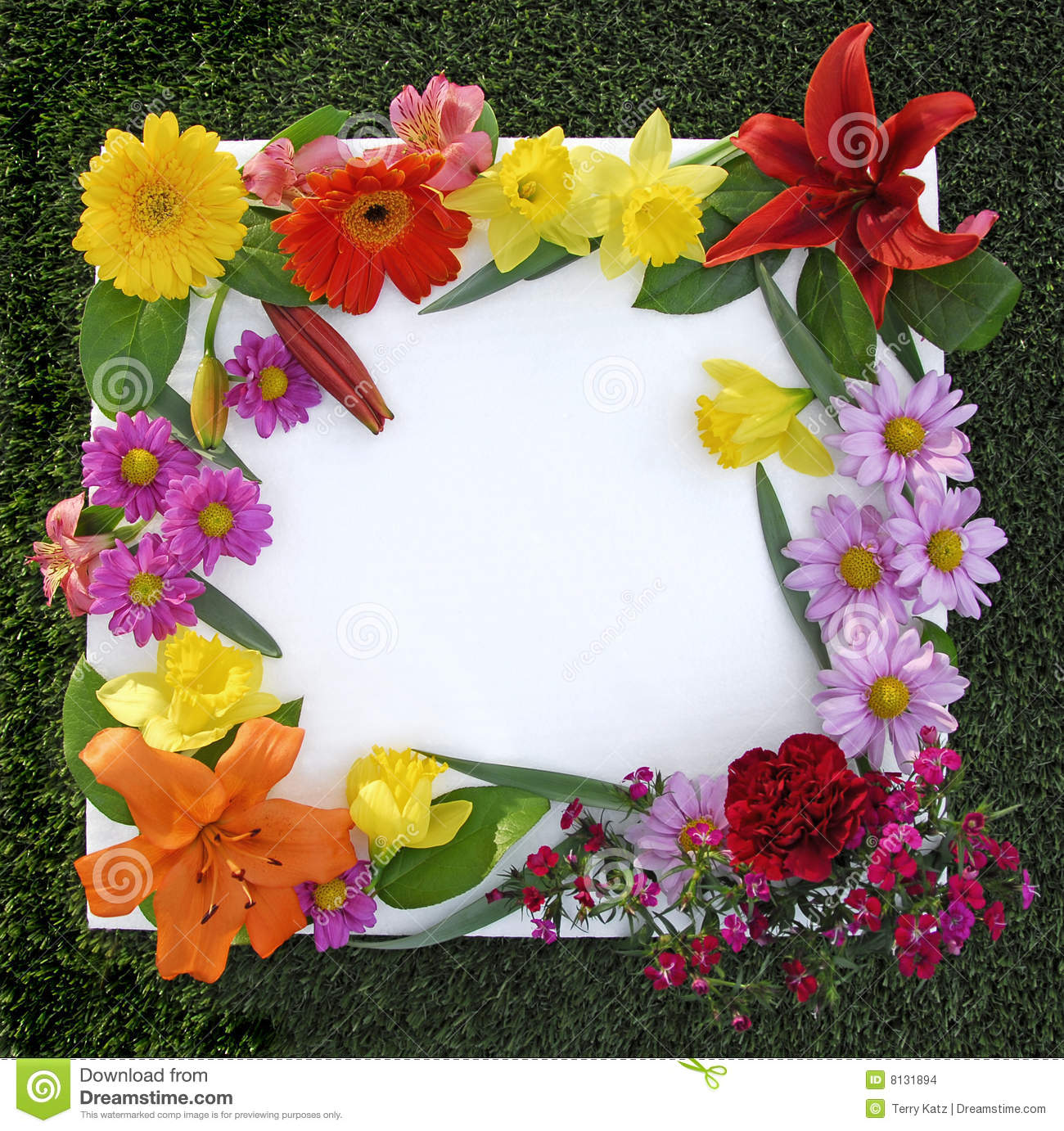 Spring flower border stock image image of mothers season 23434403 spring flower frame stock images mightylinksfo