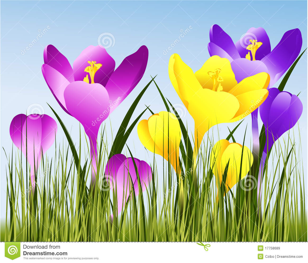 Spring flowers stock vector illustration of bloom flower 17758689 spring flowers royalty free stock photo mightylinksfo