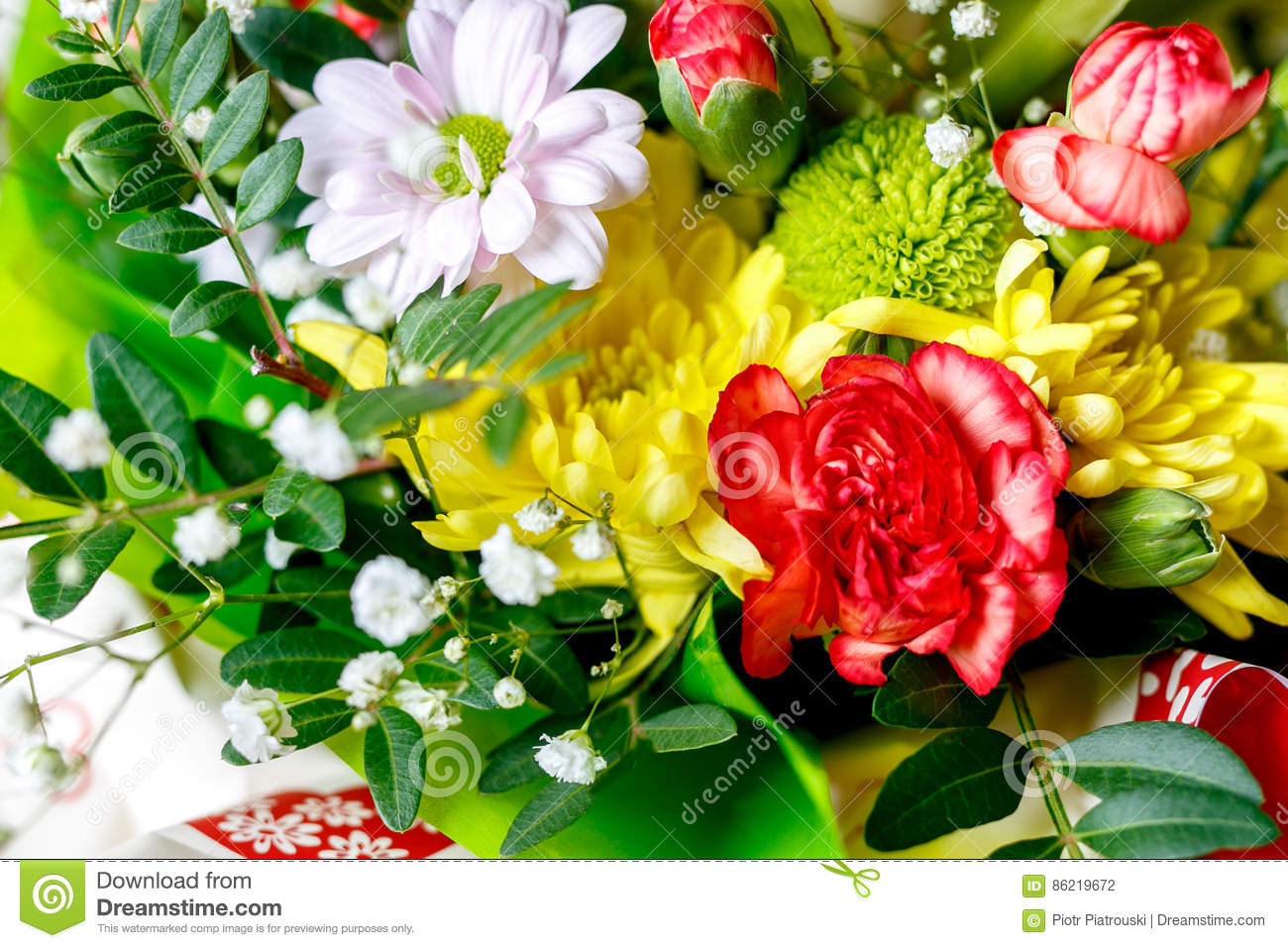 Spring Flowers Background Stock Photo Image Of Flower 86219672