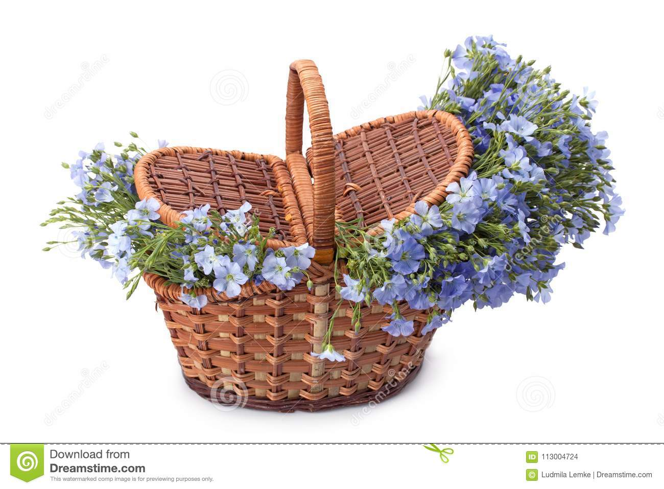 Spring Flowers In A Basket Stock Photo Image Of Garden Flowers