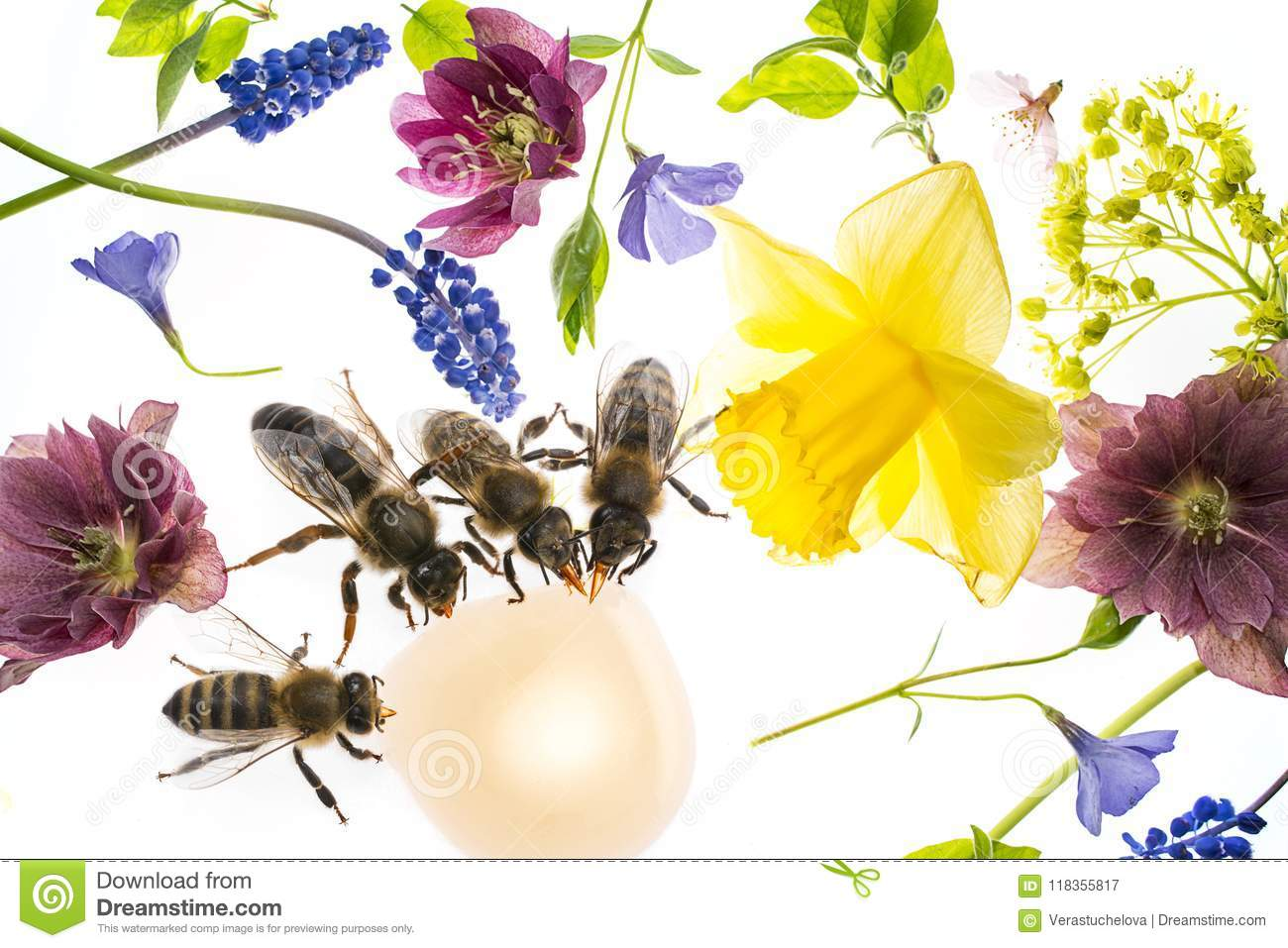 Spring flowers and bees stock image image of foliage 118355817 spring flowers and bees mightylinksfo