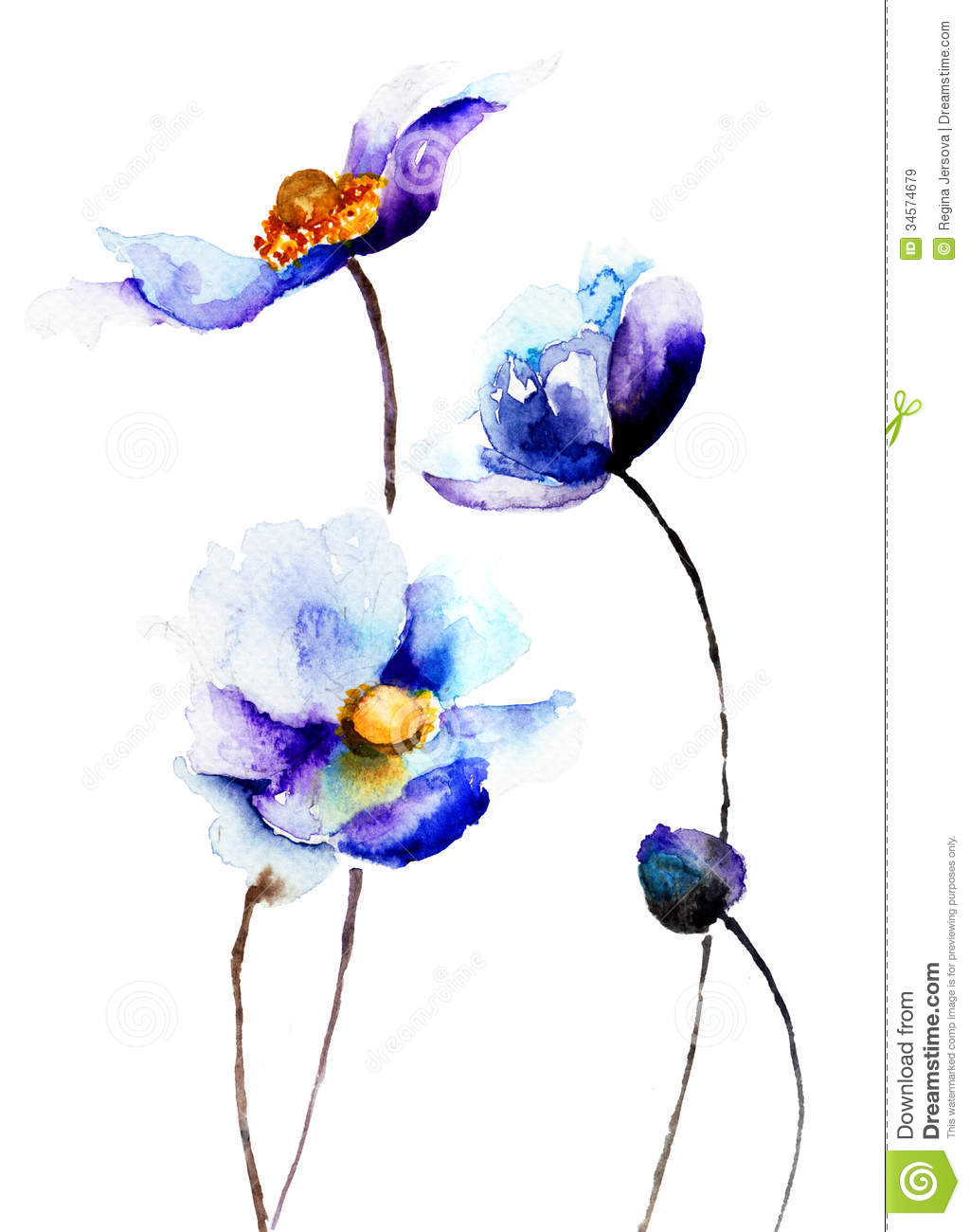 Spring flowers royalty free stock images image 34574679 for Spring flowers watercolor