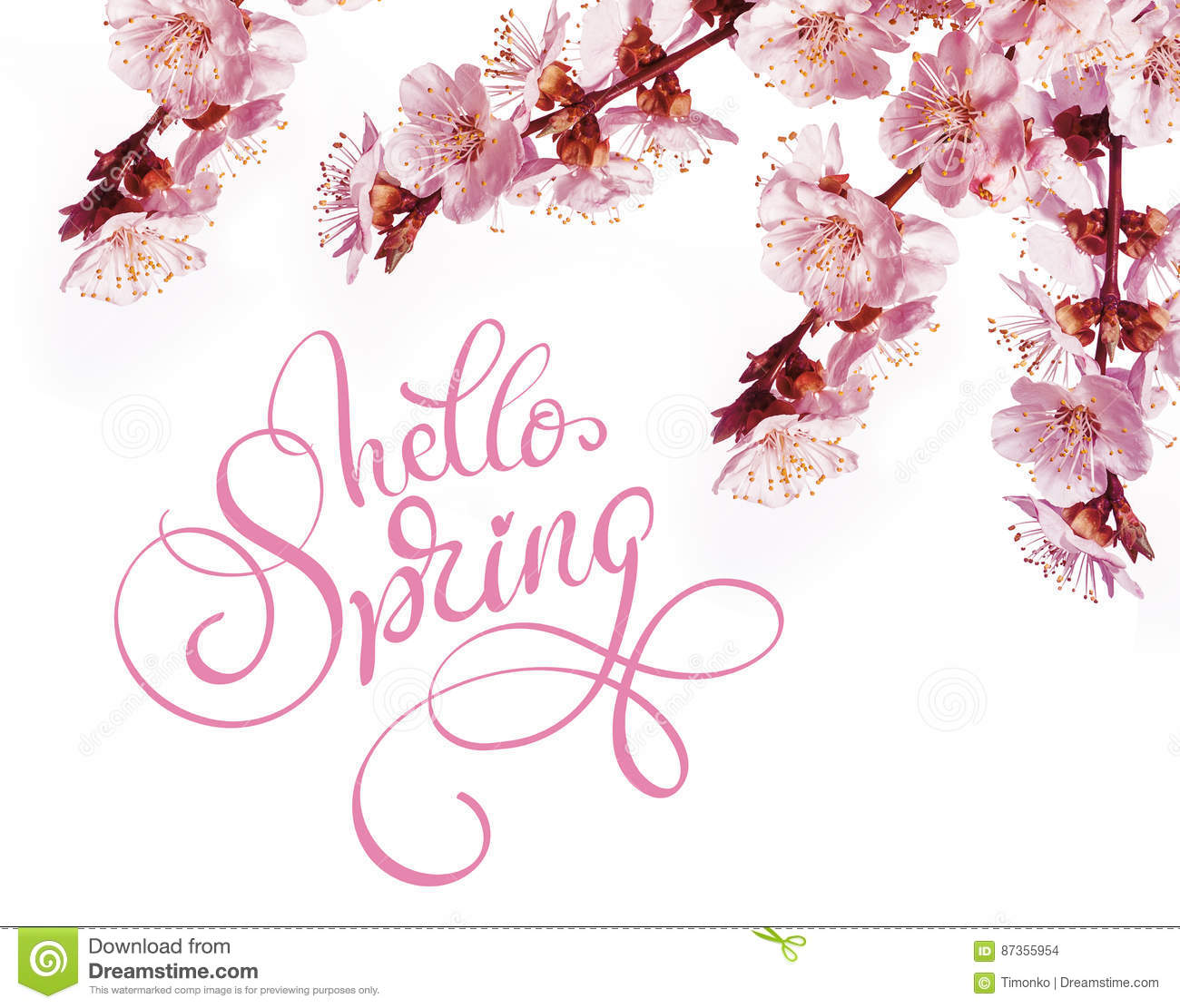 Spring flowers border and text hello calligraphy