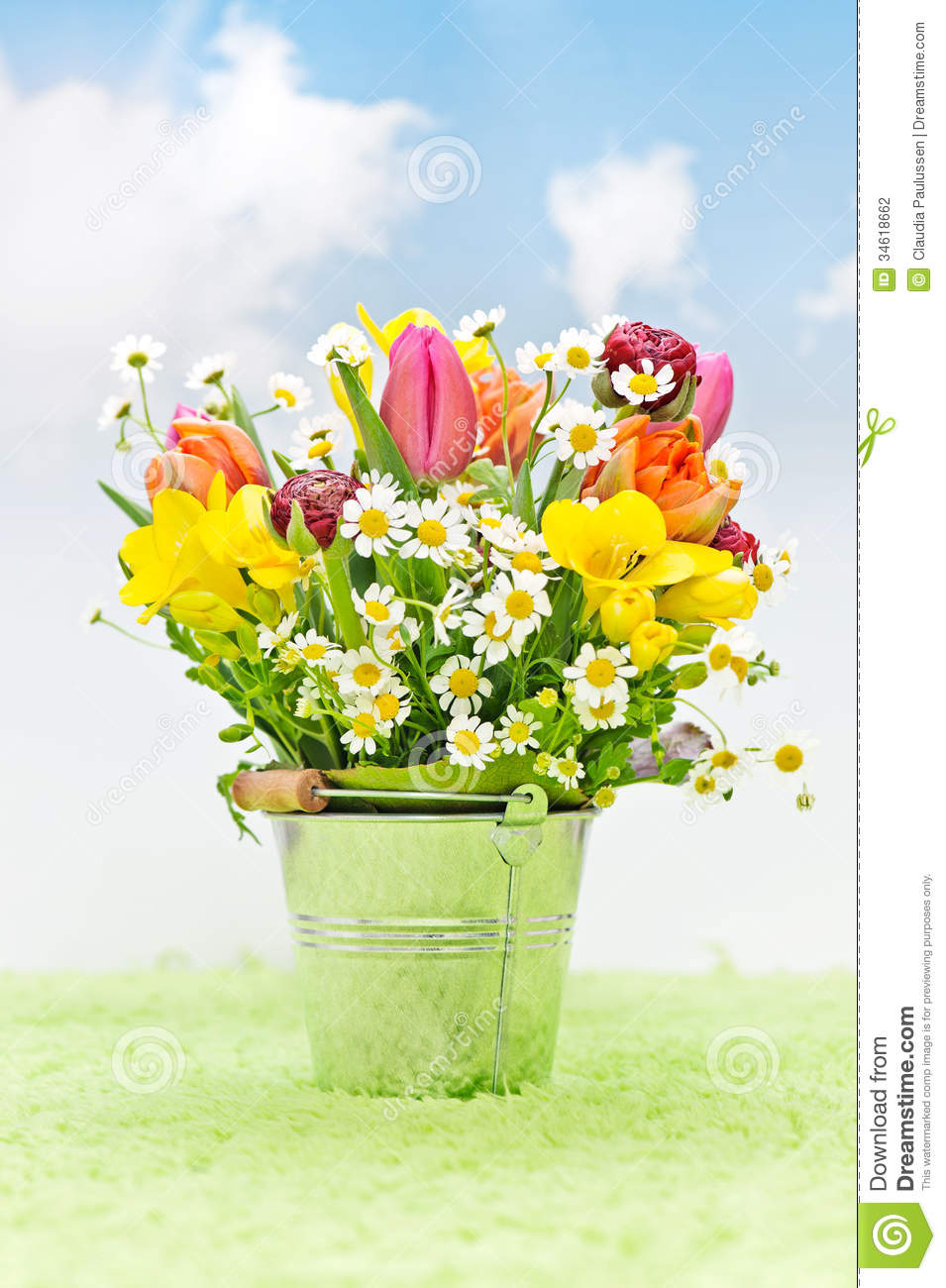 Spring flowers in a bucket stock photo image of green 34618662 spring flowers in a bucket mightylinksfo