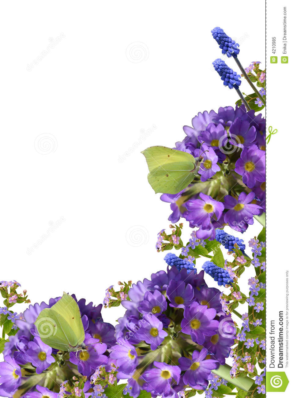 Spring Flowers And Butterflies Stock Image Image Of Background