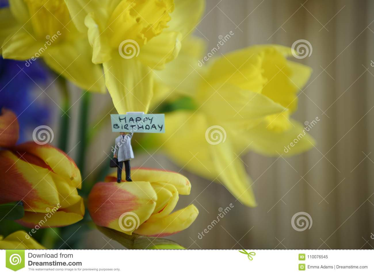 Spring Flowers Of Daffodils And Tulips With Words Or Text For Happy