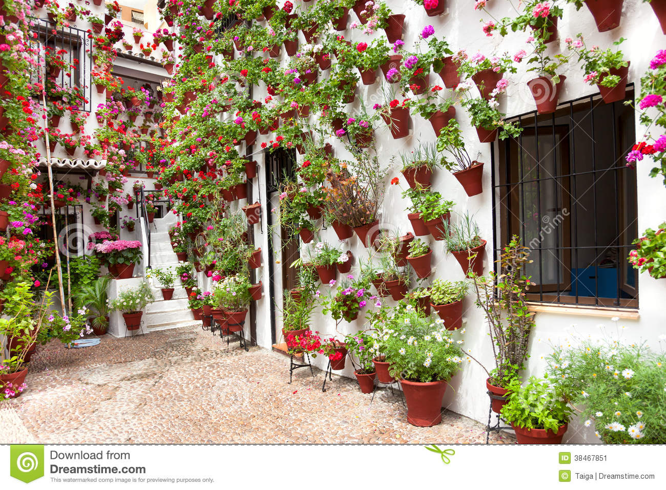 Spring Flowers Decoration Of Old House Patio Cordoba