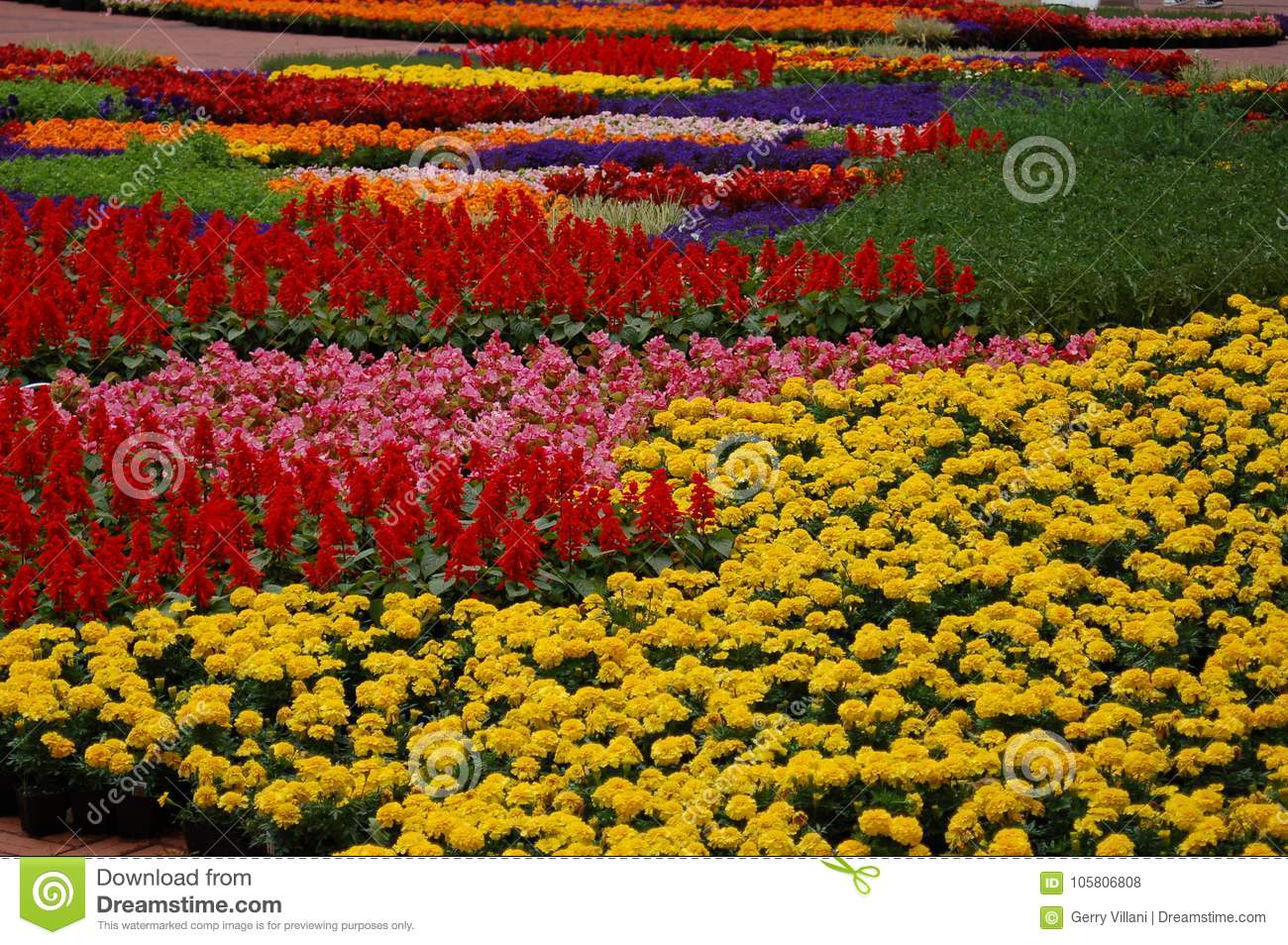 Spring Flowers Display In Pioneer Courthouse Square Portland