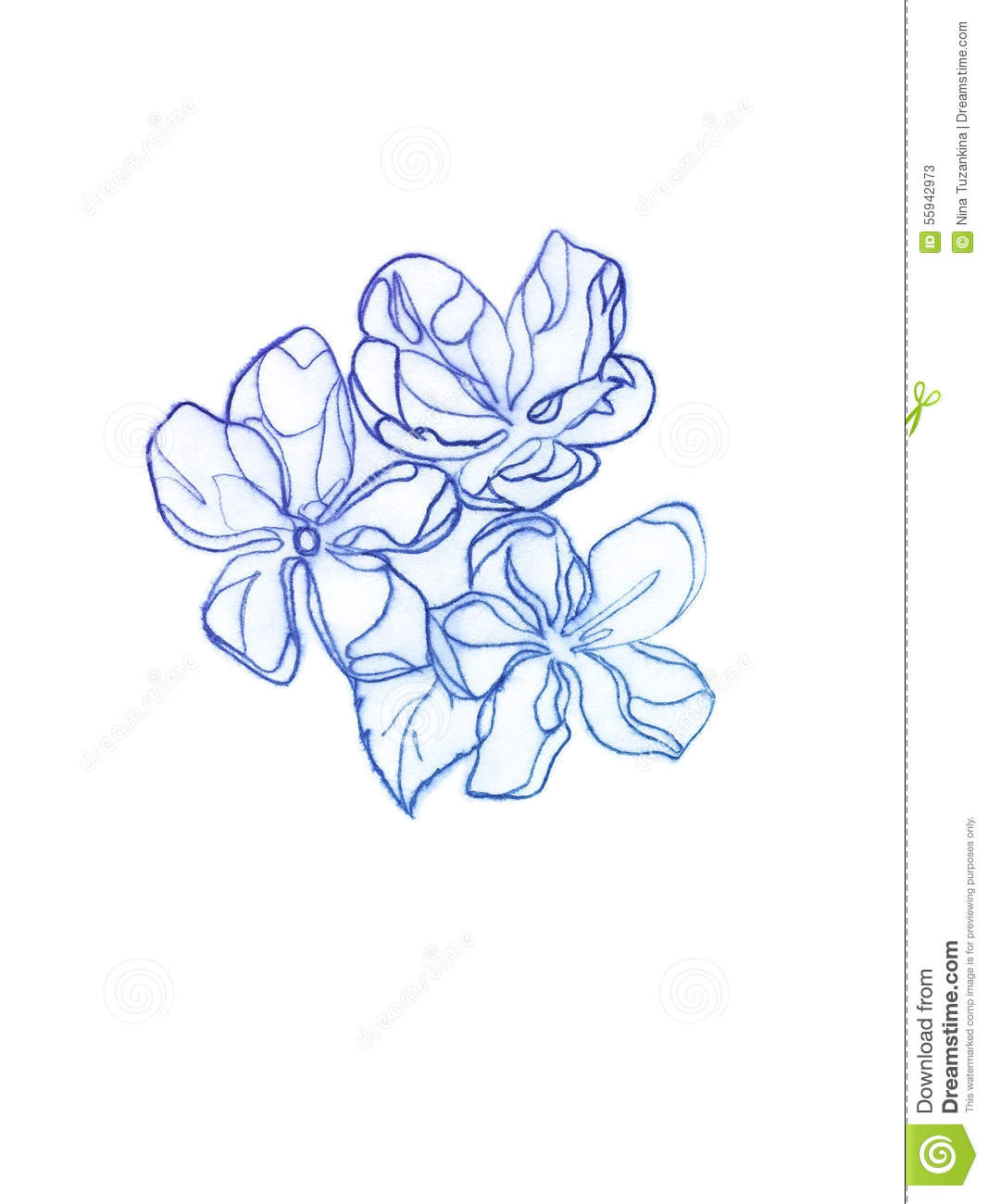 Spring flowers drawing with copying pencil stock illustration spring flowers drawing with copying pencil mightylinksfo