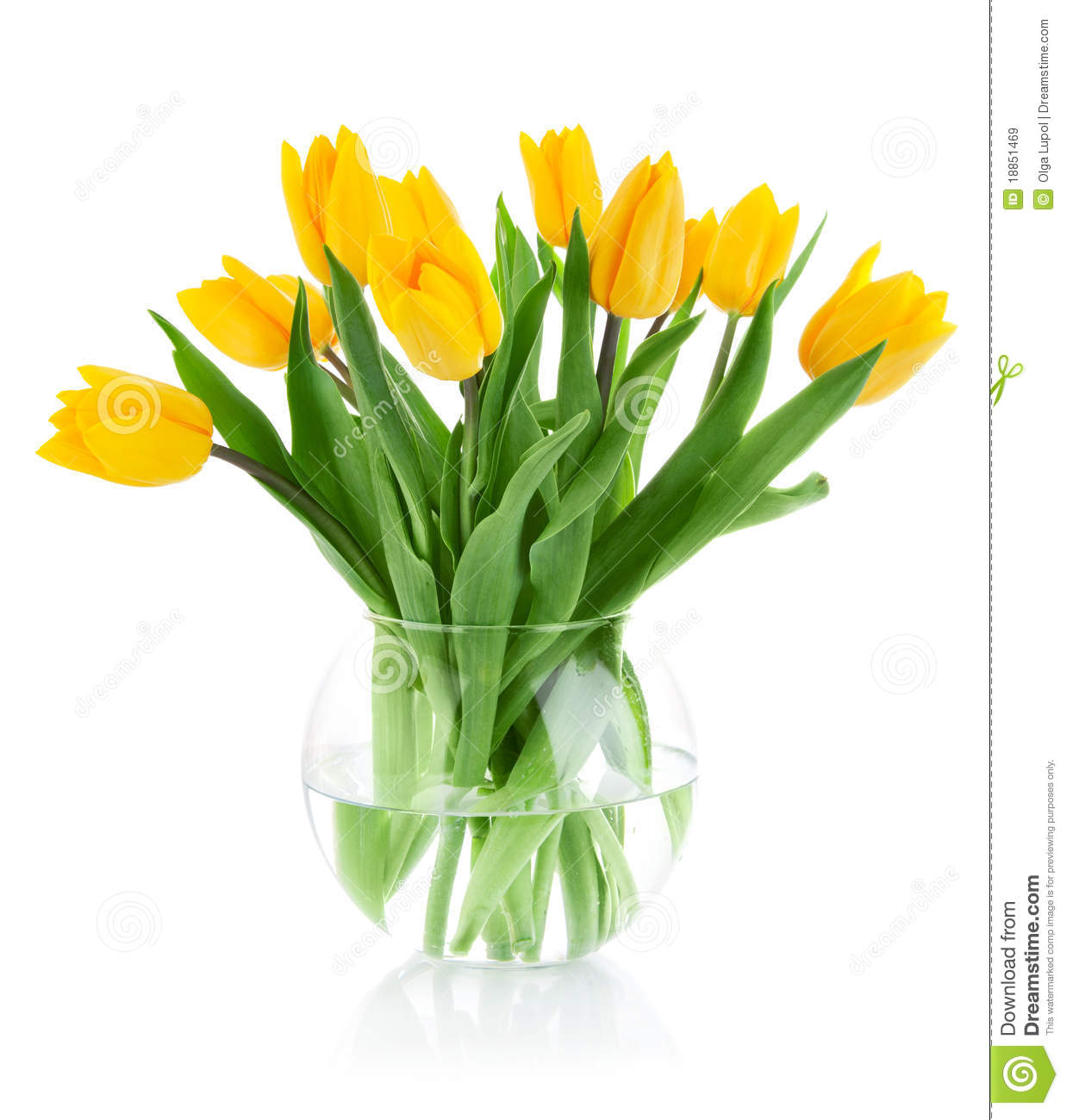Spring Flowers In Glass Vase Stock Image Image Of Celebrate