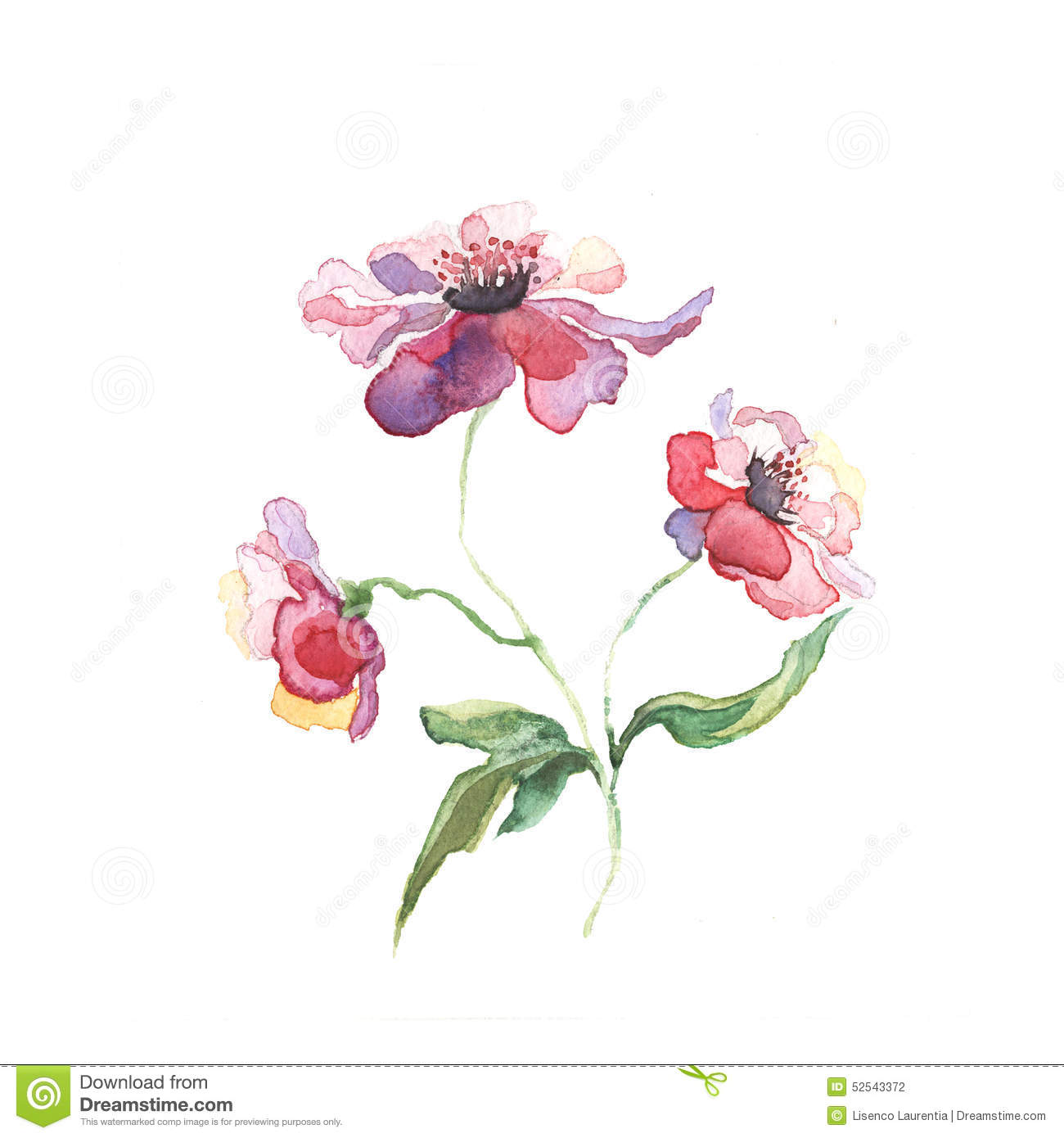 The spring flowers painting watercolor stock illustration for Spring flowers watercolor