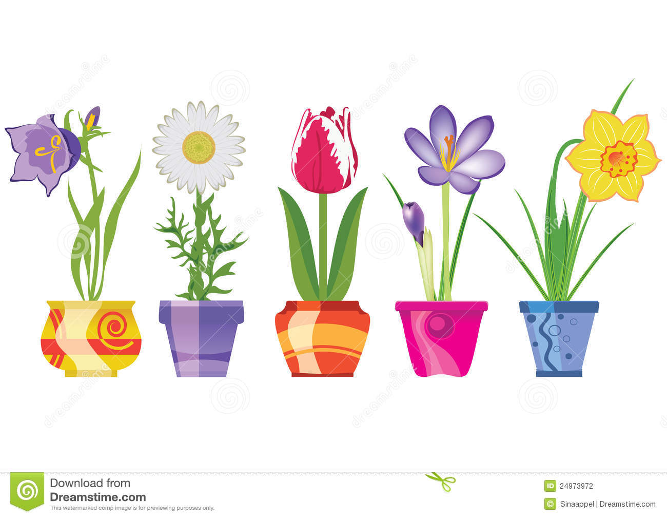 Spring Flowers In Pots Vector Ill Stock Vector Illustration Of