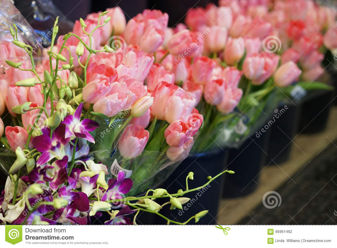 Spring Flowers For Sale Stock Photo Image Of Orchids 66961462