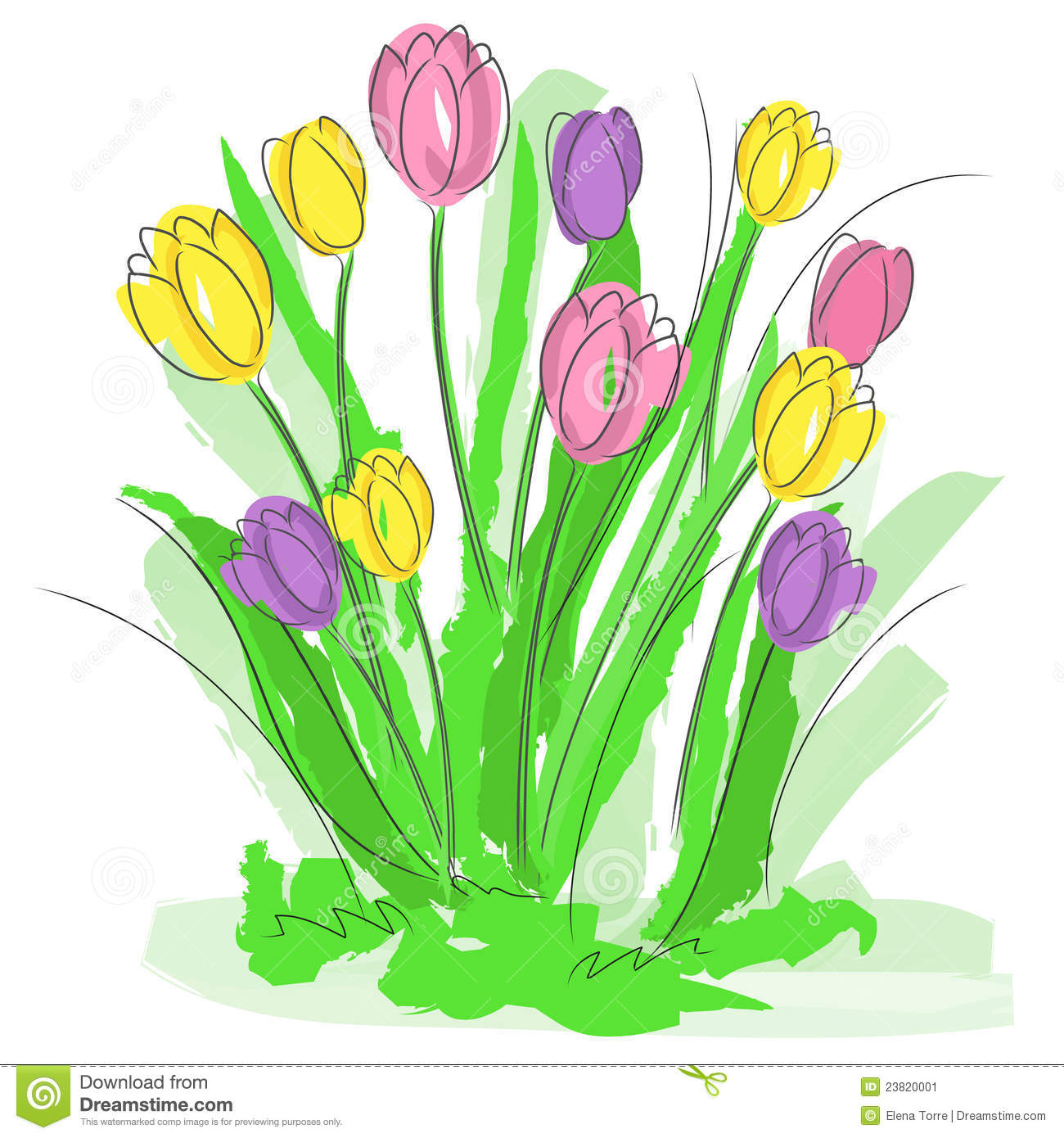Spring Flowers Vector Stock Vector Illustration Of Floral 23820001