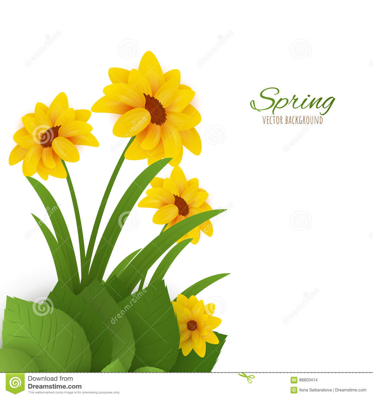 Spring Flowers Vector Background Eps10 Stock Vector Illustration