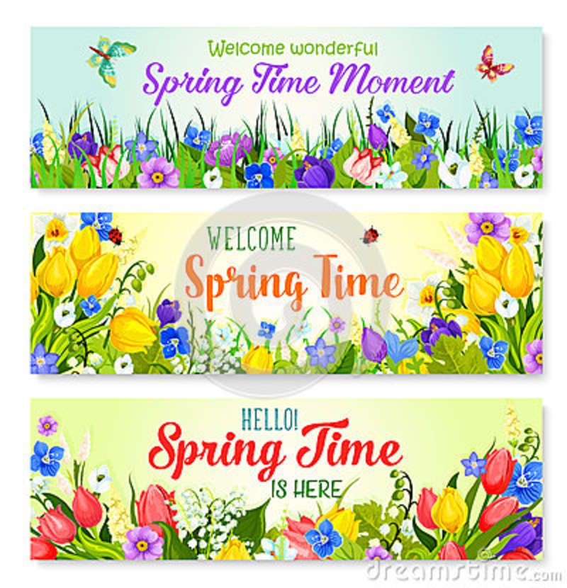 Spring flowers vector banners for holiday greeting stock vector download spring flowers vector banners for holiday greeting stock vector illustration of floral banner mightylinksfo