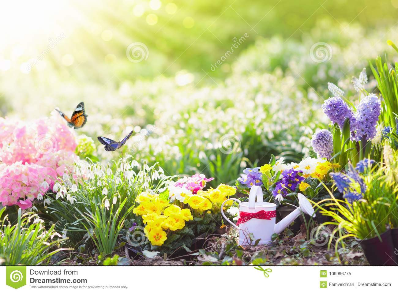 Spring garden with flowers gardening tools stock image image of beautiful blooming garden with flower bed on sunny spring day watering can shovel spade gardening tools and equipment planting potted flowers izmirmasajfo
