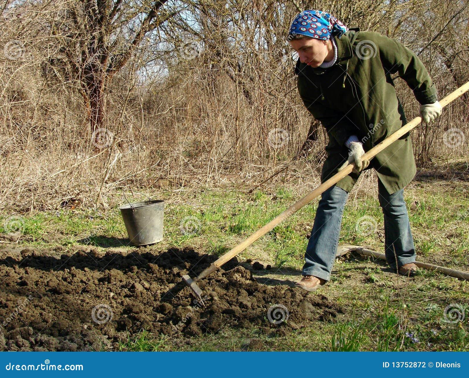 Gardening Planting Preparing Spring ...