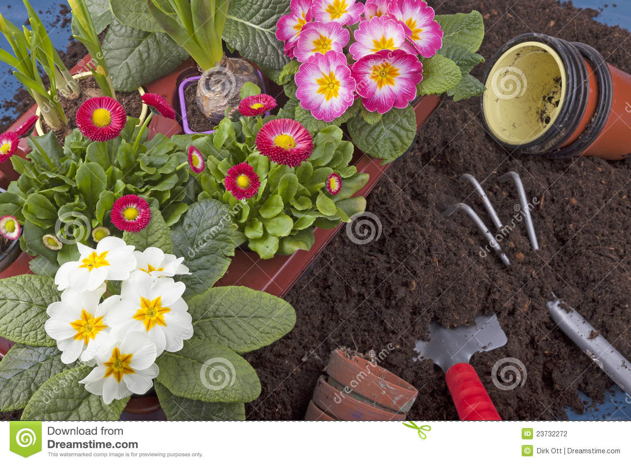 Spring gardening stock photography image 23732272 for Spring garden designs