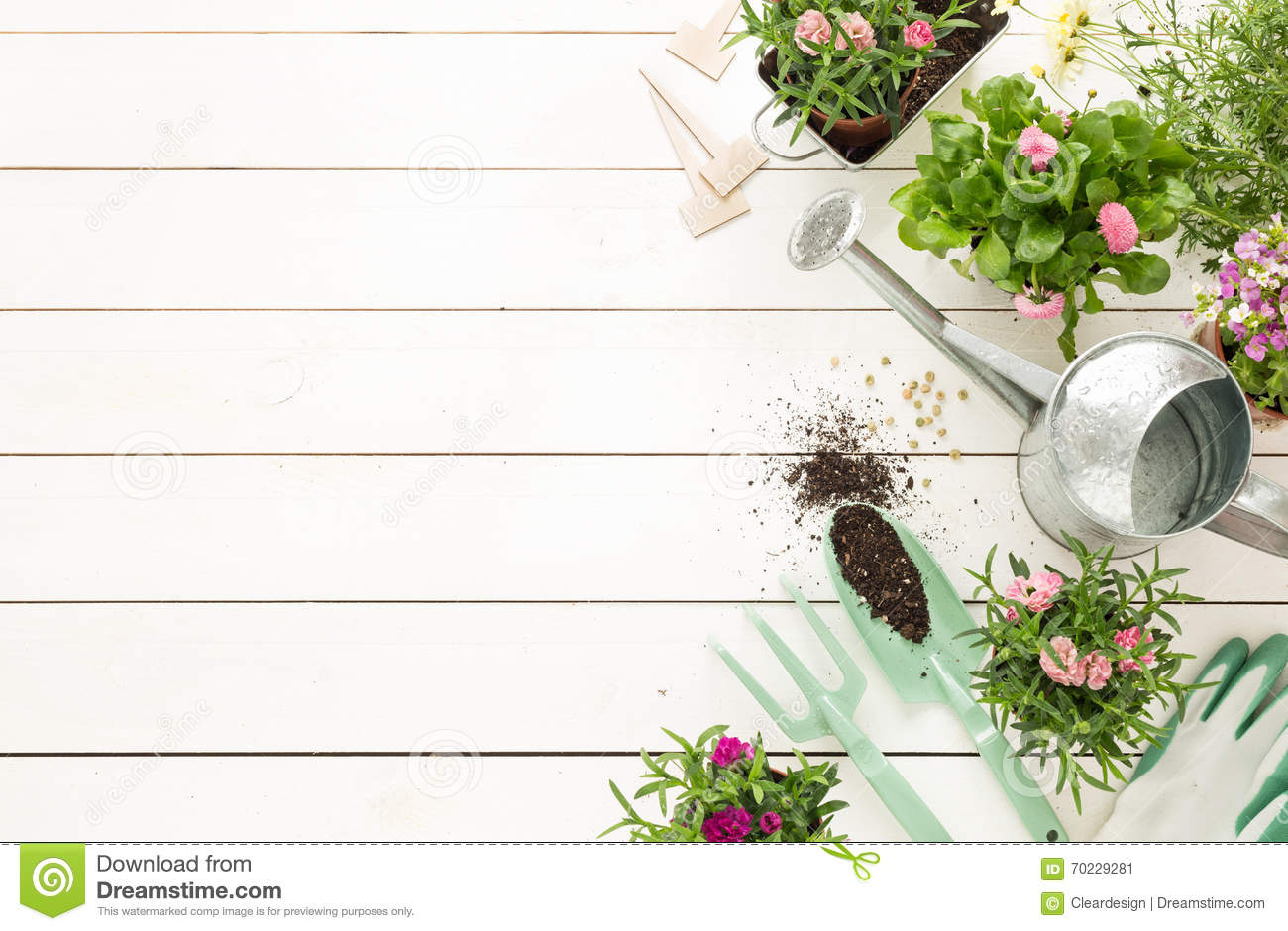 Spring - Gardening Tools And Flowers In Pots On White Wood ...