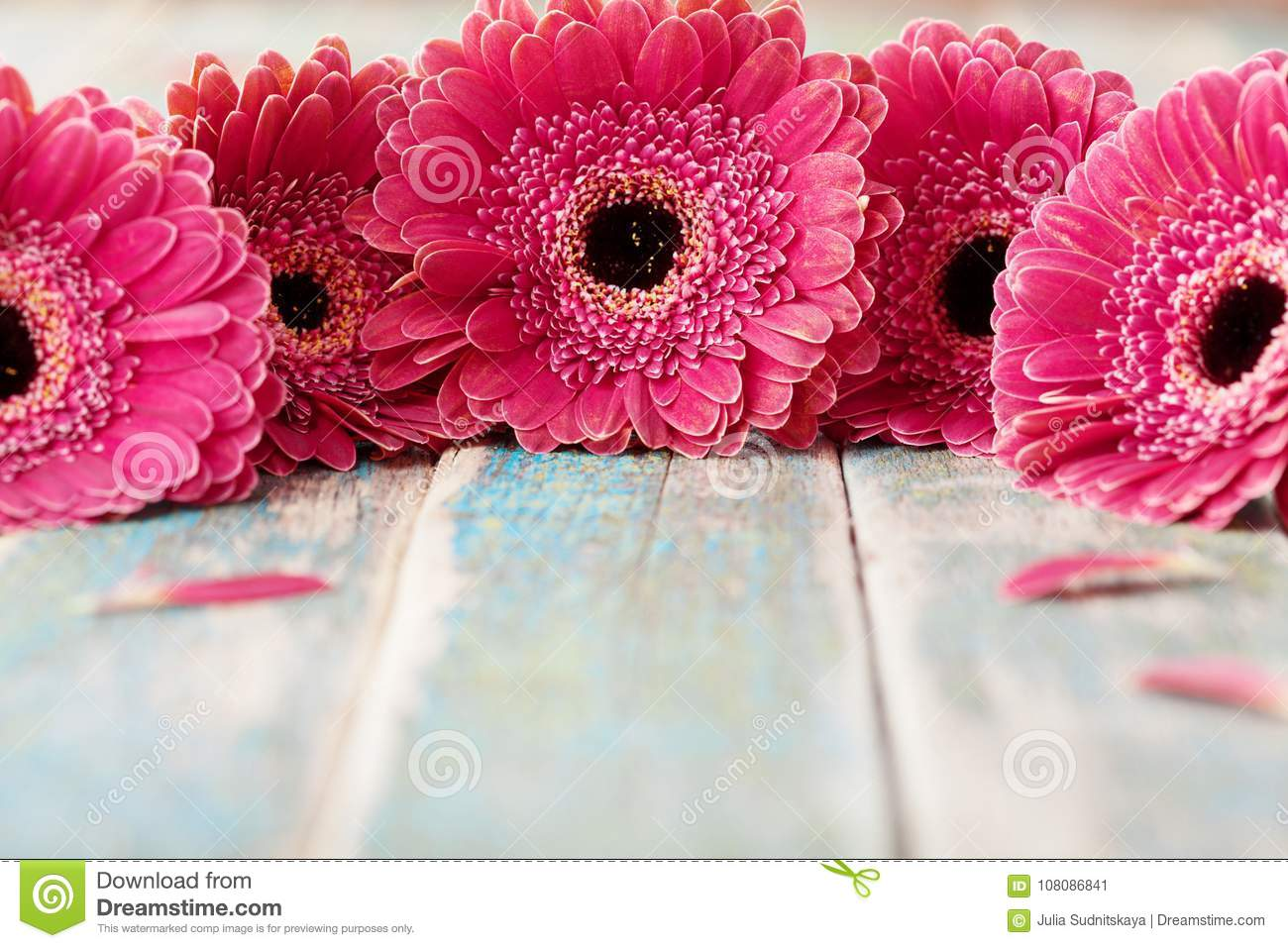 Spring gerbera flowers bouquet on rustic wooden background. Birthday, holiday, mother or womans day greeting card.