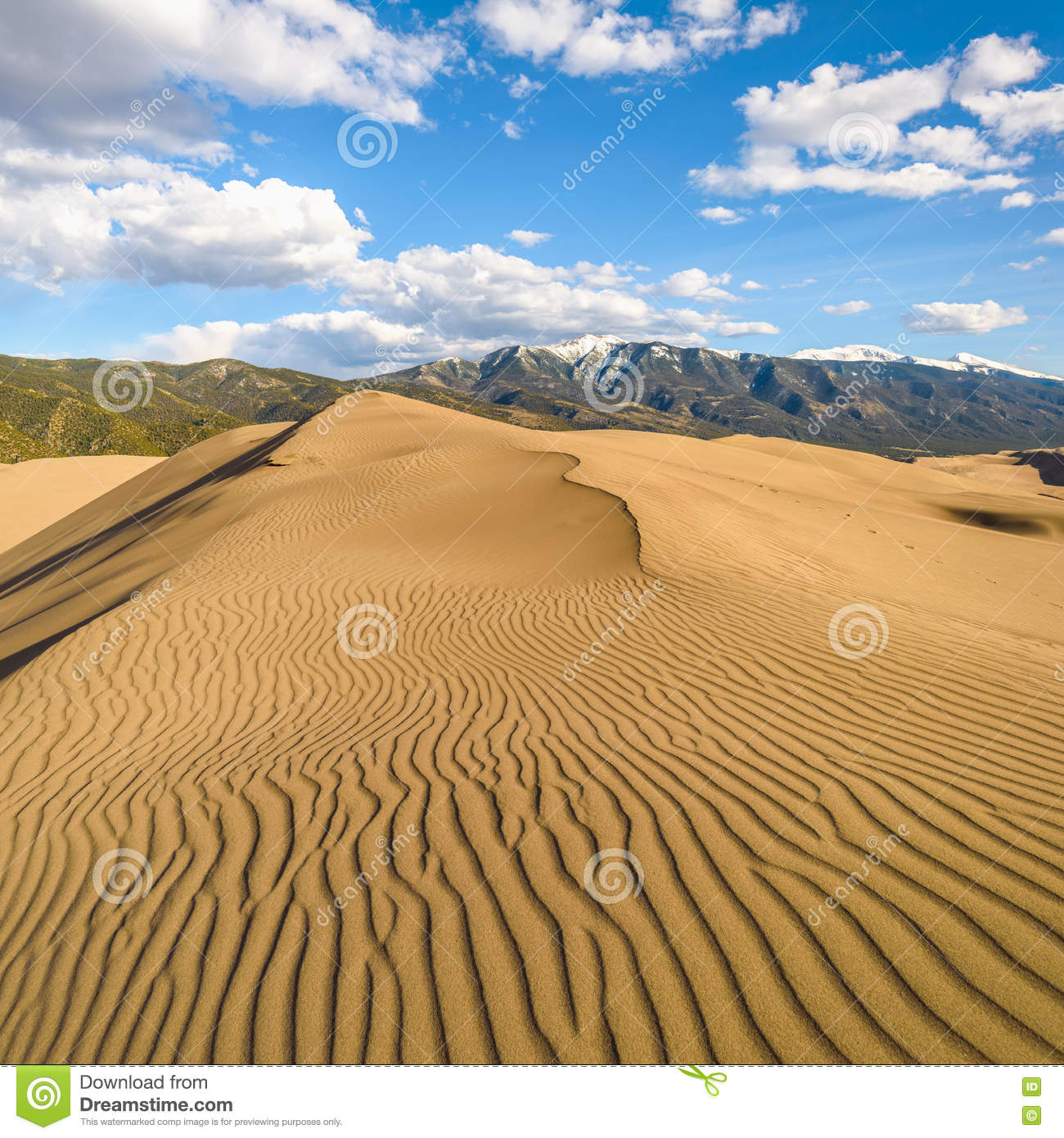 Spring Comes To Dunes >> Spring At Great Sand Dunes Square Stock Image Image Of